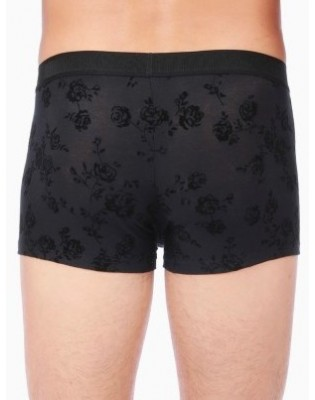 Boxer Roses Velvet seduction Hom