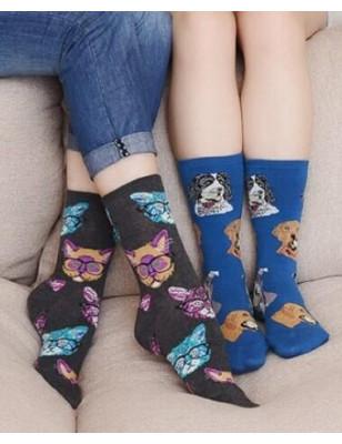 coffret Chaussettes chiens et Chats
