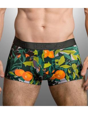 Boxer Hom Tangerine