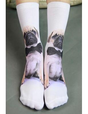 Chaussettes imprimées Pug de concours